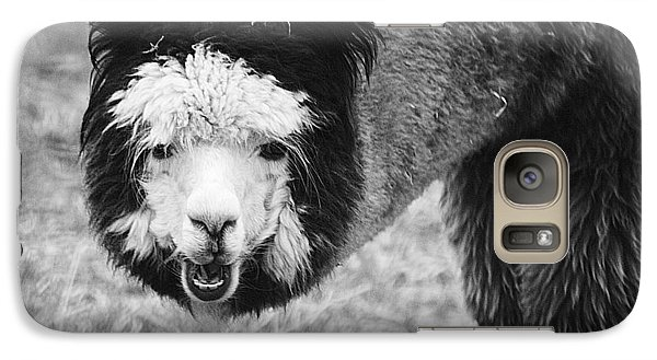 Galaxy Case featuring the photograph Llama by Yulia Kazansky