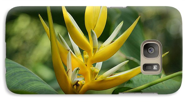 Galaxy Case featuring the photograph Lobster Claw by B Wayne Mullins