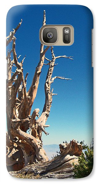 Galaxy Case featuring the photograph Lone Bristlecone by Alan Socolik