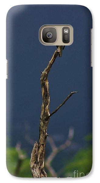 Galaxy Case featuring the photograph Lone Dove by Craig Wood
