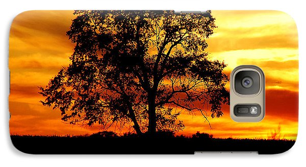 Galaxy Case featuring the photograph Lone Tree by Mary Carol Story