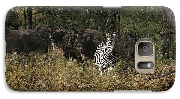 Galaxy Case featuring the photograph Lone Zebra by Joseph G Holland