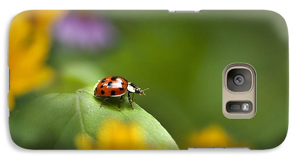 Lonely Ladybug Galaxy S7 Case by Christina Rollo