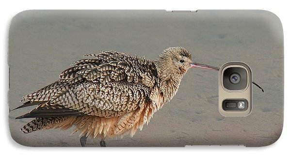 Galaxy Case featuring the photograph Long-billed Curlew by Bob and Jan Shriner