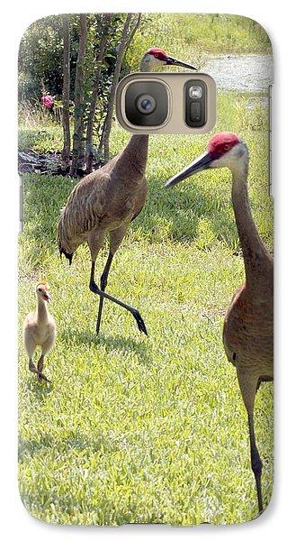 Crane Galaxy S7 Case - Looking For A Handout by Carol Groenen