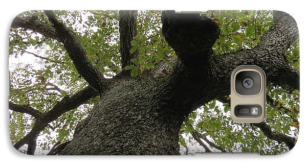 Galaxy Case featuring the photograph Looking Up A Tree by Eric Switzer