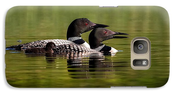 Galaxy Case featuring the photograph Loon Family by Kelly Marquardt