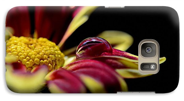 Galaxy Case featuring the photograph Lost On A Petal by Michelle Meenawong