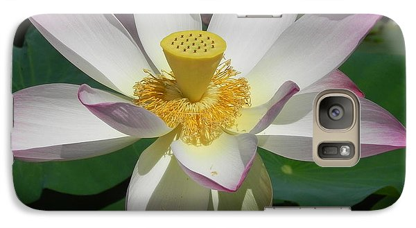 Galaxy Case featuring the photograph Lotus Flower by Chrisann Ellis