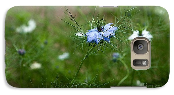 Galaxy Case featuring the photograph Love In A Mist by Liz  Alderdice