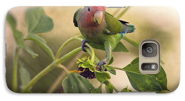 Lovebird On  Sunflower Branch  Galaxy Case by Saija  Lehtonen