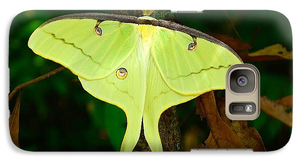 Galaxy Case featuring the photograph Luna Moth by Kathy Baccari