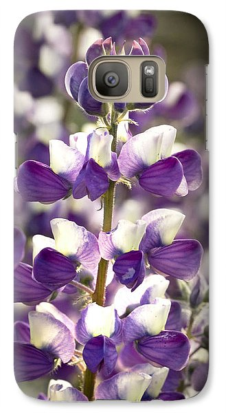 Galaxy Case featuring the photograph Lupine Wildflowers by Sonya Lang