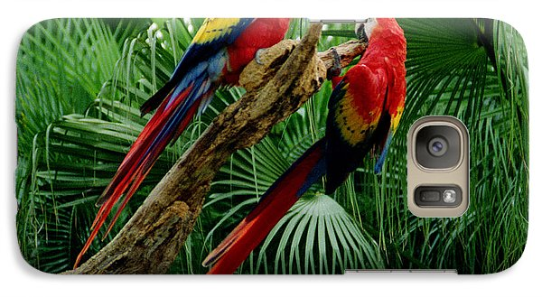 Galaxy Case featuring the photograph Macaws by Tom Brickhouse