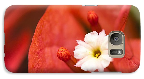 Galaxy Case featuring the photograph Macro Bougainvillea Bloom 1 by Leigh Anne Meeks