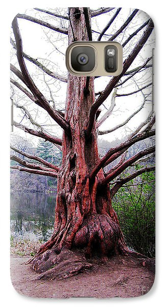 Galaxy Case featuring the photograph Magic Tree by Nina Silver