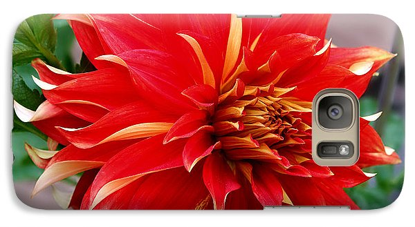 Galaxy Case featuring the photograph Magnifique by Jeanette C Landstrom