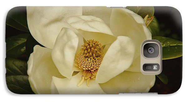 Galaxy Case featuring the photograph Magnolia Bloom by Debra Crank