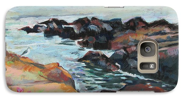 Galaxy Case featuring the painting Maine Coast Rocks And Birds by Linda Novick