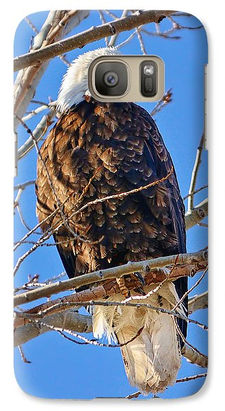 Majestic Bald Eagle Galaxy Case by Greg Norrell