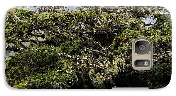 Galaxy Case featuring the photograph Majestic Branches by Davina Washington
