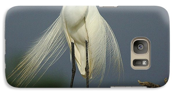 Majestic Great Egret Galaxy S7 Case by Bob Christopher