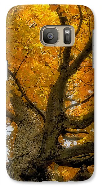 Galaxy Case featuring the photograph Majestic Maple by Gary Hall