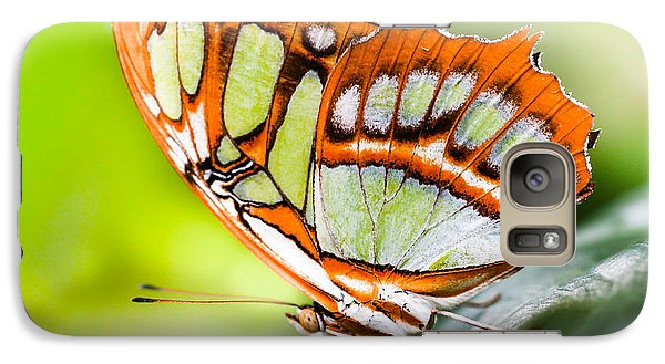 Galaxy Case featuring the photograph Malachite by Anthony Rego