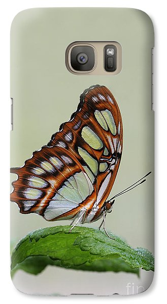 Galaxy Case featuring the photograph Malachite Butterfly #5 by Judy Whitton