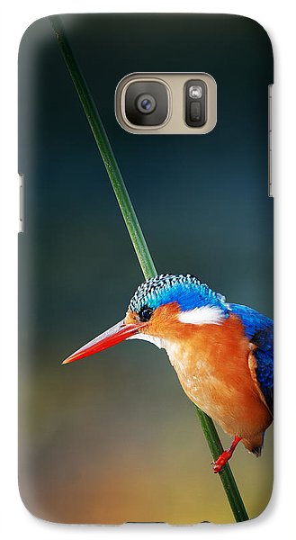 Malachite Kingfisher Galaxy S7 Case by Johan Swanepoel