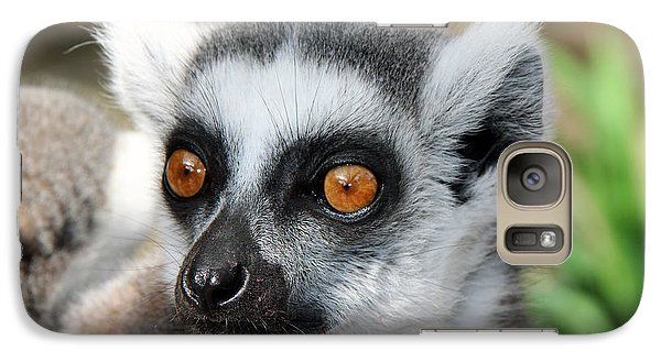 Galaxy Case featuring the photograph Malagasy Lemur by Sergey Lukashin