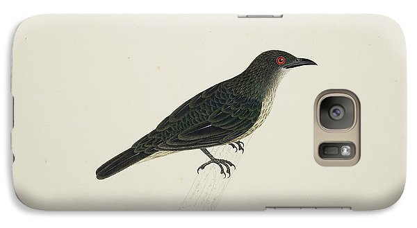 Malay Glossy Starling Galaxy S7 Case
