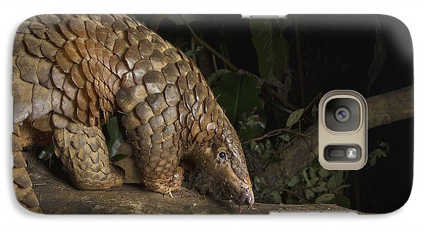Malayan Pangolin Eating Ants Vietnam Galaxy S7 Case by Suzi Eszterhas