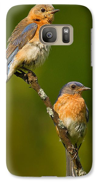 Galaxy Case featuring the photograph Male And Female Bluebirds by Jerry Fornarotto