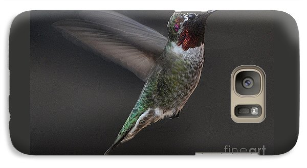 Galaxy Case featuring the photograph Male Anna Hummingbird In Flight by Jay Milo