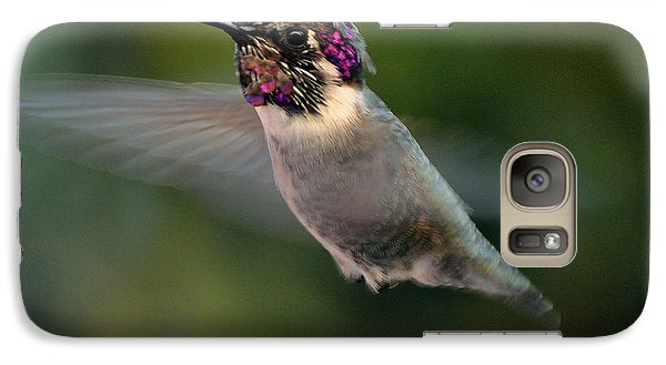 Galaxy Case featuring the photograph Male Anna's In Flight by Jay Milo
