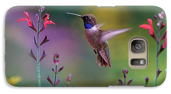 Male Black-chinned Hummingbird Galaxy S7 Case