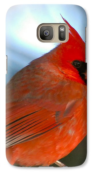 Galaxy Case featuring the photograph Male Cardinal  by Kerri Farley