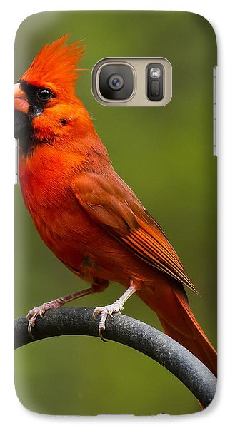 Galaxy Case featuring the photograph Male Cardinal by Robert L Jackson