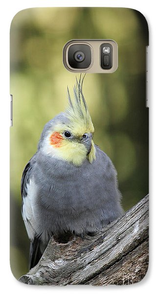 Galaxy Case featuring the photograph Male Cockatiel by Judy Whitton