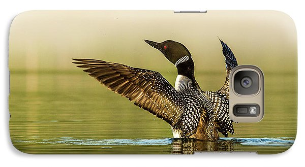 Loon Galaxy S7 Case - Male Common Loon Drying His Wings by Chuck Haney