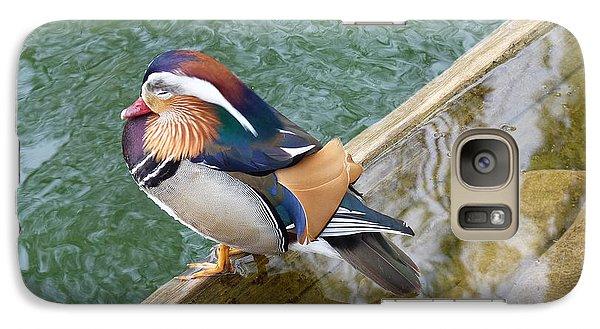 Galaxy Case featuring the photograph Male Mandarin Duck Sleeping At Pond Edge by Menega Sabidussi