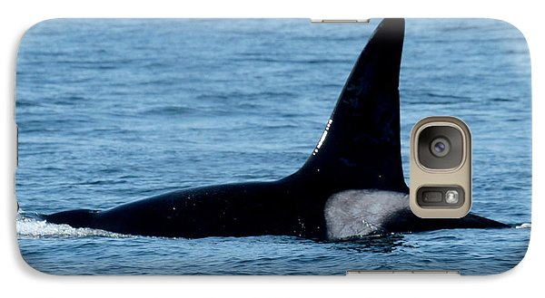 Galaxy Case featuring the photograph Male Orca Killer Whale In Monterey Bay 2013 by California Views Mr Pat Hathaway Archives
