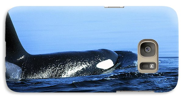 Galaxy Case featuring the photograph Male Orca Off The San Juan Islands Washington 1986 by California Views Mr Pat Hathaway Archives