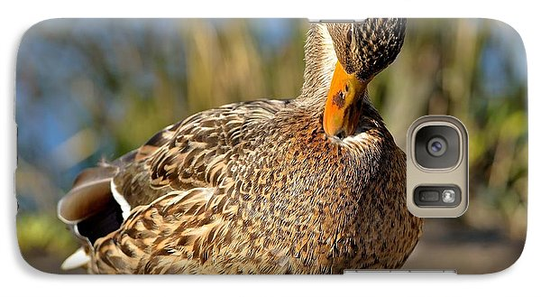 Galaxy Case featuring the photograph Mallard Duck Preening by Kathy King