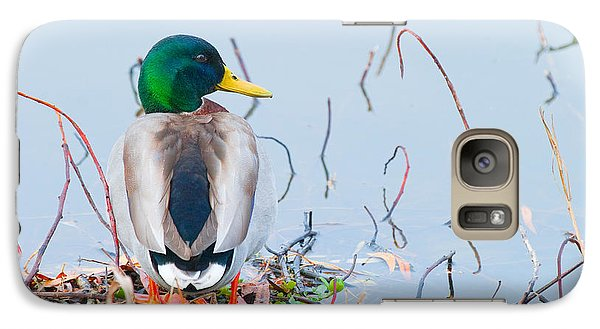 Galaxy Case featuring the photograph Mallard by Ram Vasudev