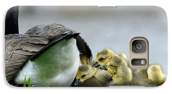 Galaxy Case featuring the photograph Mama And Goslings by Lisa Phillips