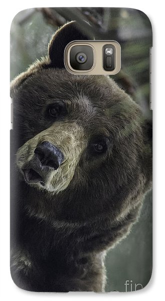 Galaxy Case featuring the photograph Mama Bear by Mitch Shindelbower