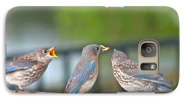 Galaxy Case featuring the photograph Mama Bluebird And Fledglings by Jeanne Kay Juhos