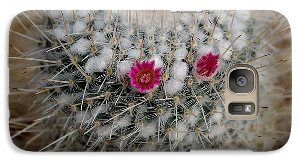 Galaxy Case featuring the photograph Mammillaria Geminispina by Scott Lyons
